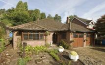 2 bedroom Detached Bungalow in 'Chenevare Lodge' COMBER...