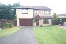 4 bed Detached property to rent in Sinderby Close...