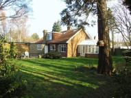 Detached Bungalow for sale in Graygill, Brunton Lane...