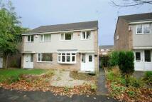 3 bedroom semi detached property for sale in Ascot Walk, Kingston Park