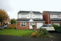 4 bedroom Detached home for sale in Burnbridge, Seaton Burn