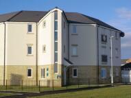 Taku Court Apartment to rent