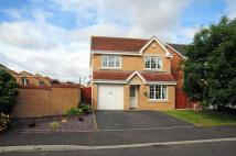 4 bed Detached house in Cedar Grove, Blyth