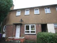 3 bedroom semi detached house to rent in Beltrees Crescent...