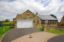 3 bedroom Detached Bungalow in Bellingham, Hexham
