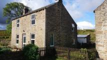 Detached house for sale in Sinderhope  Allendale