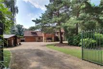 Detached house for sale in Warrenwood...