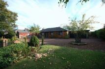 Detached home for sale in Grangemoor Road...