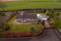 4 bed Detached Bungalow for sale in Hebron, Morpeth