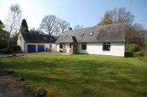 Detached Bungalow for sale in Longhirst, Morpeth...