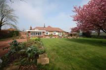 Bungalow for sale in The Close, Morpeth...