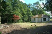 Woolsington Detached Bungalow for sale