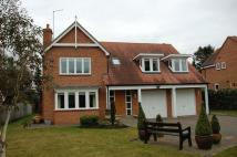 Detached house in Ashdale, Darras Hall