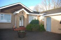 4 bedroom Detached Bungalow for sale in Taberna Close...