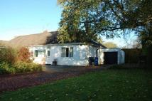 2 bed Semi-Detached Bungalow for sale in The Rise, Darras Hall