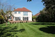 Detached home in Rosslyn Road, Billericay...