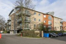 2 bed Flat to rent in Kings Court...