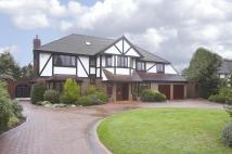 6 bed Detached property to rent in Silverdale Avenue...