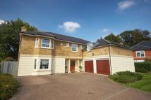 Detached house to rent in Lytton Park, Cobham, KT11