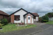 Ryton Detached Bungalow for sale