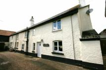 3 bed Cottage in Woodbury - Delightful...