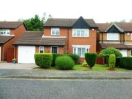 3 bed semi detached house for sale in Swanton Close...