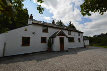 Llansannan Cottage for sale
