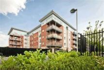 Platt House Apartment to rent