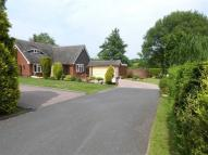 Detached Bungalow for sale in Old Penkridge Road...