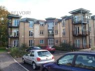 Apartment to rent in Esdaile Park, The Grange...