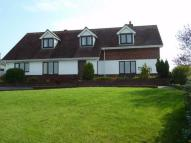 Detached Bungalow in Verwig Road, Cardigan...
