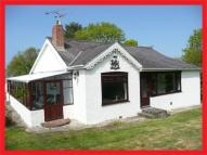 4 bed Detached house for sale in Fishguard Road, Newport...