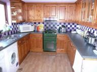 Semi-Detached Bungalow for sale in Llain Drigarn, CRYMYCH...