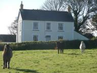 4 bed Detached property for sale in Brynawelon, Llanychaer...