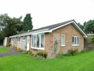 3 bed Detached Bungalow in Hornbeam Cresent...