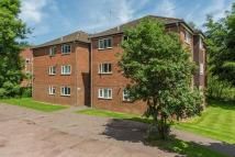 Flat to rent in St Johns Well Lane...