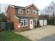 4 bedroom home to rent in Merley