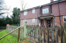 Flat to rent in Sutton Scotney