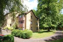 Flat to rent in Winchester