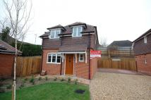 3 bed Detached home to rent in Winchester