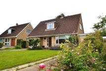4 bed Detached Bungalow to rent in Beaminster