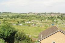 Flat to rent in Salisbury