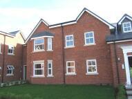 Salisbury Flat to rent