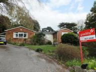 3 bedroom Detached Bungalow in Bassett