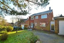 Detached property to rent in Bassett