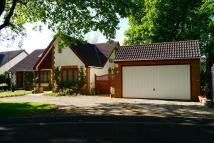 Detached Bungalow to rent in Wareham