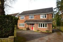 4 bed Detached home in Sandford