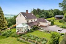 Seven Wells Equestrian Facility house for sale