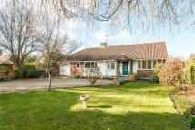 3 bedroom Bungalow for sale in Wedmans Lane, Rotherwick...