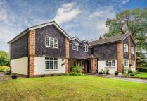 7 bedroom Detached house in Frog Lane, Mapledurwell...